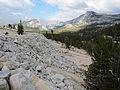 Olmsted Point Yosemite August 2013 004.jpg