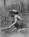 PSM V77 D535 An ilongot man at work in clearing.png