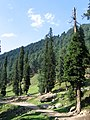 Pahalgam views 49.JPG