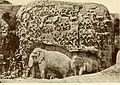 Paradise of Indra from Rock Sculpture of Mamallapuram 1913.jpg
