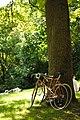 Parc des Buttes Chaumont 2012-06-17 n1.jpg