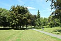 Parc interdépartemental des sports Plaine Nord à Choisy-le-Roi le 14 août 2017 - 143.jpg
