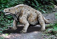 Pareiasaurus serridens.jpg