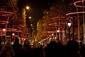 Paris Avenue des Champs-Elysées Tree Rings Chriitmas 2011 b.jpg