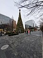 Park at CityCenter DC Christmas Tree.jpg