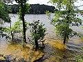 Parkers Creek Jordan Lake NC SP 3750 (36009076511).jpg