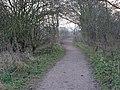 Path by Trent near Attenborough - geograph.org.uk - 1100112.jpg