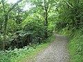Path through the Heddon Valley - geograph.org.uk - 917570.jpg