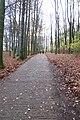 Path to Říp hill near Mnětěš, Litoměřice District.jpg