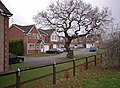 Pelham Close, Beverley - geograph.org.uk - 629432.jpg