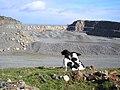 Penmaenmawr Quarry - geograph.org.uk - 232843.jpg