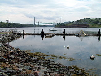 Penobscot Narrows Bridge bei Bucksport