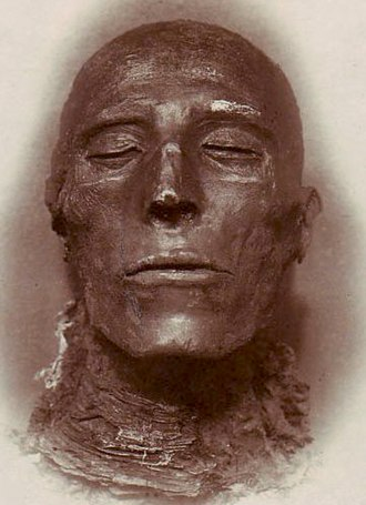 Seti I - Head of the mummy of Seti I