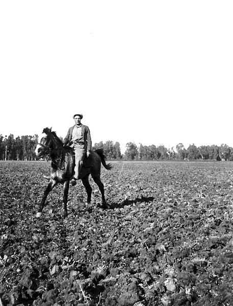גן-שמואל-שמירה בשדה 1936