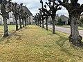 Place de l'église (Sougères-en-Puisaye), avril 2019 - (1).jpg