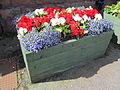 Planter at Ellesmere Port railway station (1).JPG