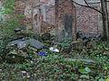 Pniów, pozostałości pałacu (18).JPG