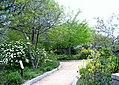 Pollinator Garden in April (17428699999).jpg