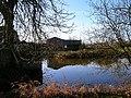 Pond, Hankham Hall Farm - geograph.org.uk - 109460.jpg