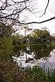 Pond, Lakeside, Enfield - geograph.org.uk - 770185.jpg