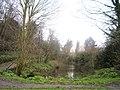 Pond at Rayleigh Mount - panoramio.jpg