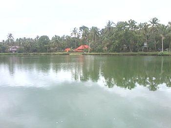 Pond at Sree annapoorneshwari, cherukunnu.jpg
