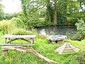 Pond by Hyes Farm - geograph.org.uk - 1363851.jpg