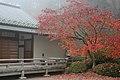 Portland japanese garden.jpg