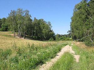 High Fläming Nature Park - Rummel close to Preußnitz
