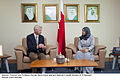 Professor Damian McCormack talking to Bahrain's Health Minister Dr Al Balooshi.jpg
