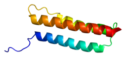 Protein BAG4 PDB 1m62.png