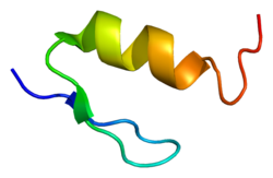 Protein WT1 PDB 1xf7.png