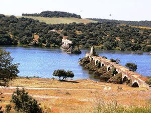 Puente Ayuda sobre el Guadiana ,fronterizo entre España(Badajoz) y Portugal(Elvas).JPG