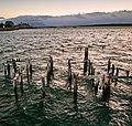 Puerto Natales (39330507015).jpg