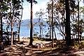 Queens Lake 2.jpg