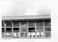Queensland State Archives 4905 Geebung State School roofing Brisbane September 1953.png