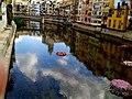 RIU I CASES DE L'ONYAR (GIRONA-TEMPS DE FLORS 2014) - panoramio.jpg