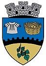 ROU AG Topoloveni CoA.jpg