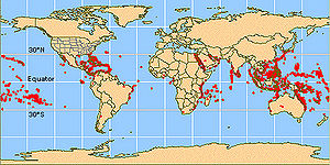 Coral reef fish - Distribution of coral reefs