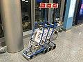 Reima luggage carts (42006342522).jpg