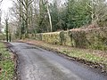 Repaired perimeter wall on Petwoth Park - geograph.org.uk - 1734817.jpg