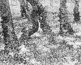Reproductie van een schilderij van Van Gogh, Bestanddeelnr 252-1890.jpg
