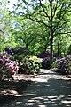 Rhododendronpark Bremen 20090513 124.JPG