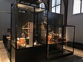 Rijksmuseum Boerhaave in 2019 foto 29.jpg