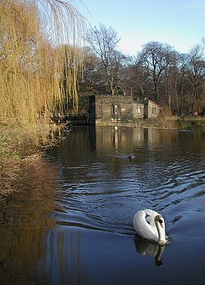 River Aire - Image: River Aire at Kirkstall Abbey