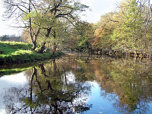 River Derwent, Derbyshire - The River Derwent, near Hathersage