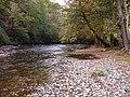 River Vyrnwy, Pontrobert - geograph.org.uk - 591864.jpg