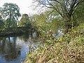 River Wear near Page Bank Bridge - geograph.org.uk - 1018581.jpg