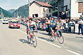 Roche and Mottet - Tour de France 1993.jpg