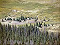 Rocky Mount N.P., Cache la Poudre River 8-28-12 (8087112127).jpg